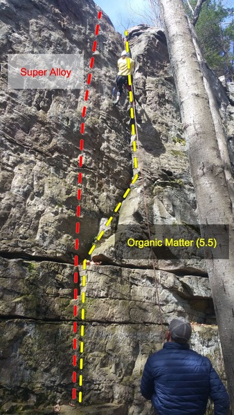 Climber on Organic Matter, nearing the top!