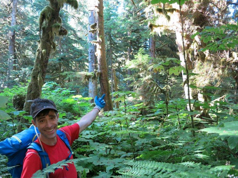 Chilliwack trail near US border