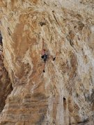 Rock Climbing Photo: Jeremiah going through the crux