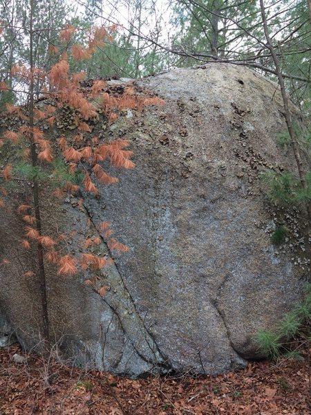 Rock Climbing Photo: Deep Woods 13 {DW13 [R26]}.