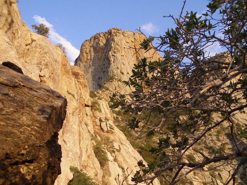 Rock Climbing Photo: Epic approach... ugghhh