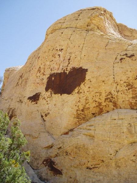 "Rock Climbing Photo: ""Trigger Happy"" wall"