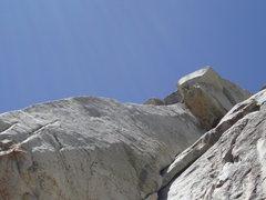 Rock Climbing Photo: Not the traitor horn.