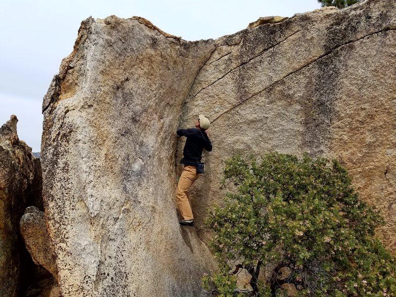 Rock Climbing Photo: yummy...