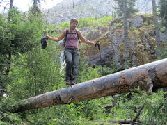 Rock Climbing Photo: Log crossing on the final approach to Snow Creek W...