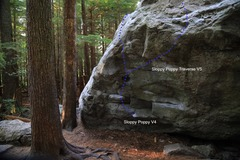 Rock Climbing Photo: Sloppy Poppy