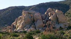 Rock Climbing Photo: Junk Clump as seen from Ryan Mtn trailhead parking...