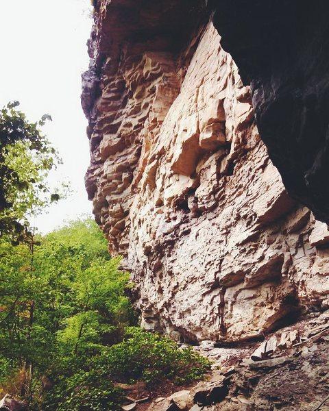 Lizard Wall, Little River Canyon
