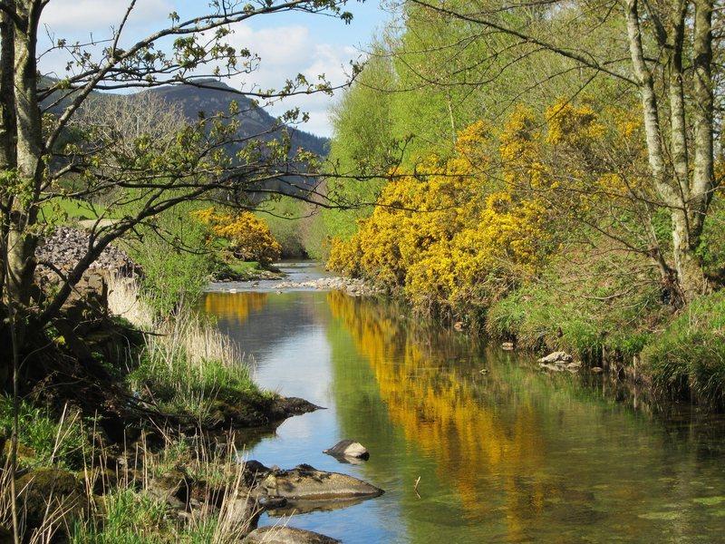 Newlands Beck
