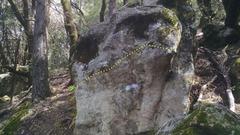 Rock Climbing Photo: Domino traverse