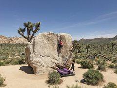 Rock Climbing Photo: A friend finishing up the crack on Pinhead on Apri...