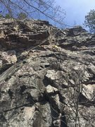 Rock Climbing Photo: Maddog  traversing left to the corner on Ixodes.  ...