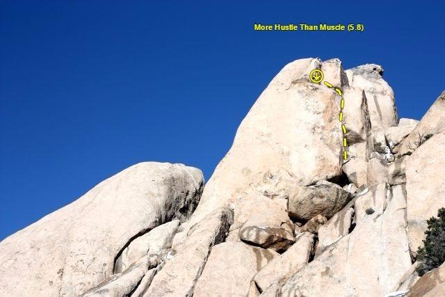 More Hustle Than Muscle (5.8), Joshua Tree NP<br>