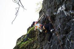 Rock Climbing Photo: A local climber sending it on Bum Camp at Cliff Dr...