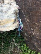 Rock Climbing Photo: Second Burlesque rappel, Option B anchor.