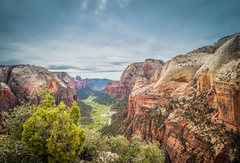 Rock Climbing Photo: Taken from Angels Landing.