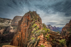 Rock Climbing Photo: Angels Landing.