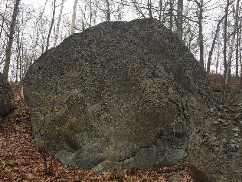 Goliath Rock Area - G04.