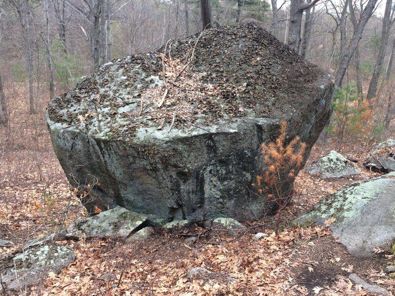 Rock Climbing Photo: Weetamoo - W06.