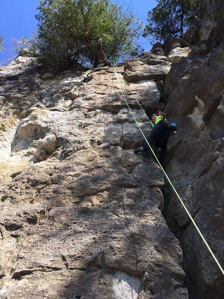 Rock Climbing Photo: Top-roping boa constrictor.