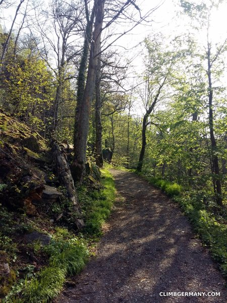 The main paths are very well maintained as they are also popular with hikers heading to the nearby castle ruins.