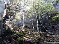 Rock Climbing Photo: Typical Battert landscape