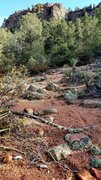 Rock Climbing Photo: The Rim Trail South meets this view of the Tonto B...