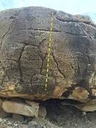 Rock Climbing Photo: Sexy Chicken V1