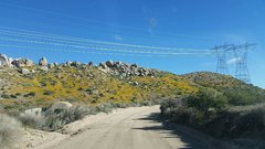 Rock Climbing Photo: Spring has sprung, San Bernardino Mountains  Photo...