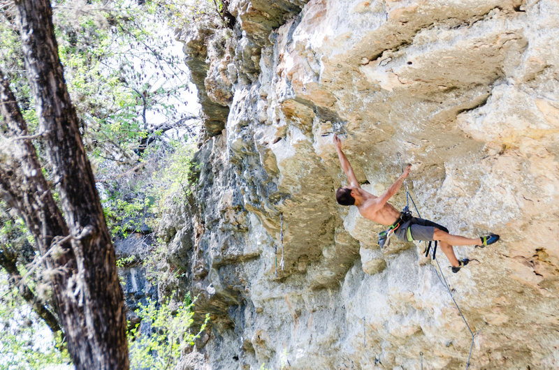 Liang Wu goes for the crux of &#39;Bolus&#39;<br> <br> Photo by Du Lo