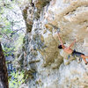 Liang Wu goes for the crux of 'Bolus'<br> <br> Photo by Du Lo