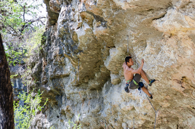 Liang Wu navigates the traverse sequence on &#39;Hyper Salivation&#39;<br> <br> Photo by Du Lo