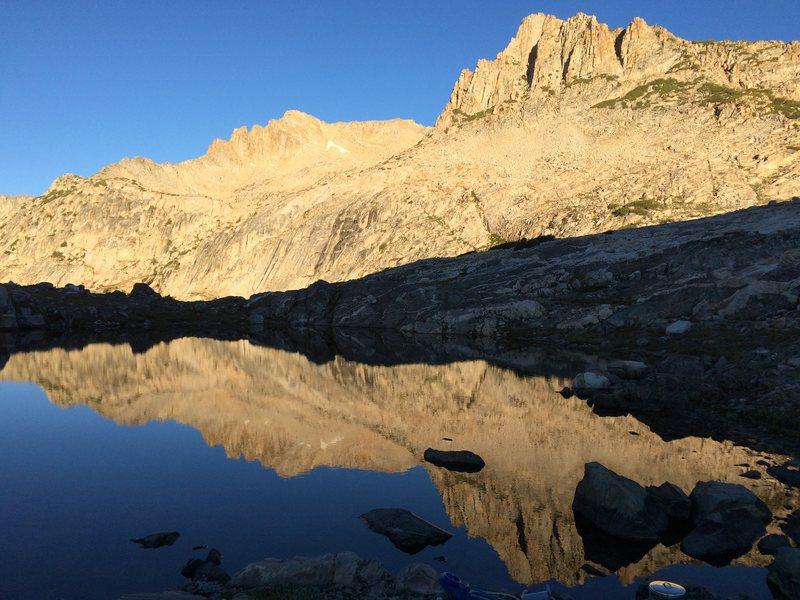 alpine near Conness