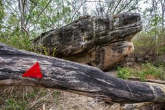 Rock Climbing Photo: This is the sign to the East Eucalyptus section, s...