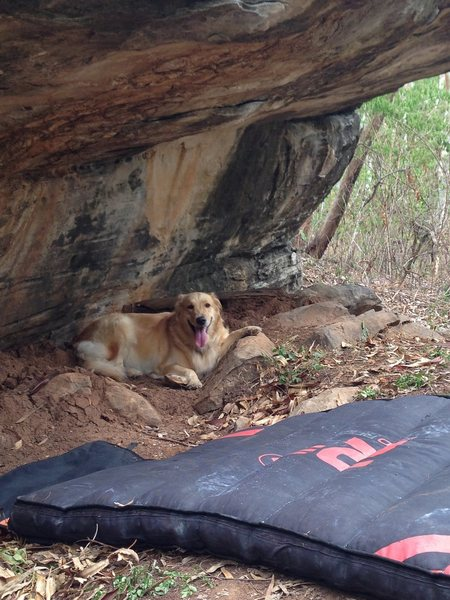 Rock Climbing Photo: This is why we called the route 'Lazy Daisy&#3...