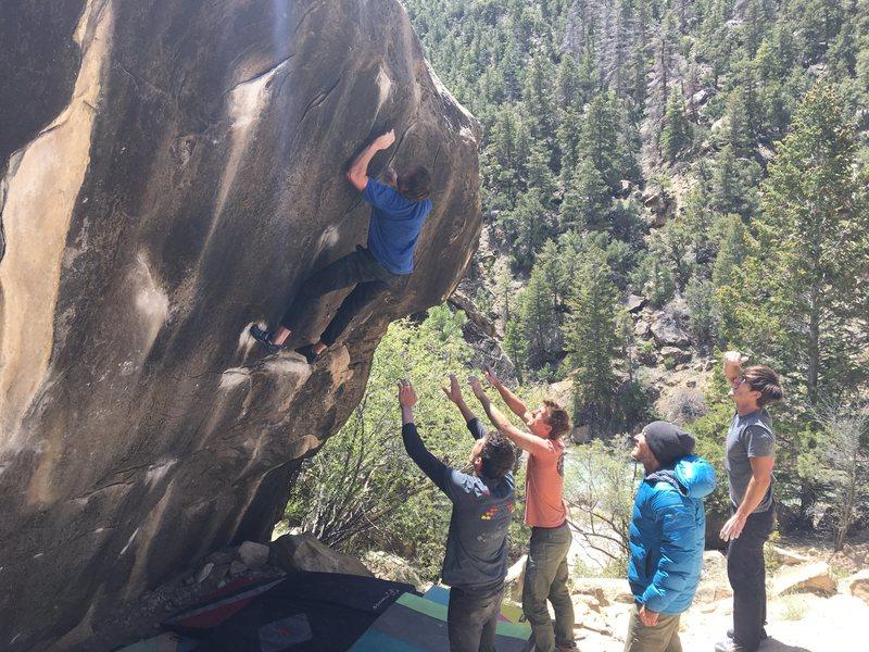 Rock Climbing Photo: Committing