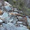 destruction from rockfall