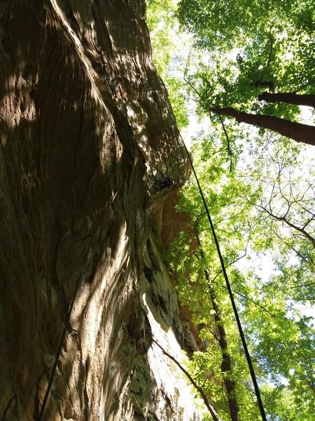 Rock Climbing Photo: Beautiful area of PMRP