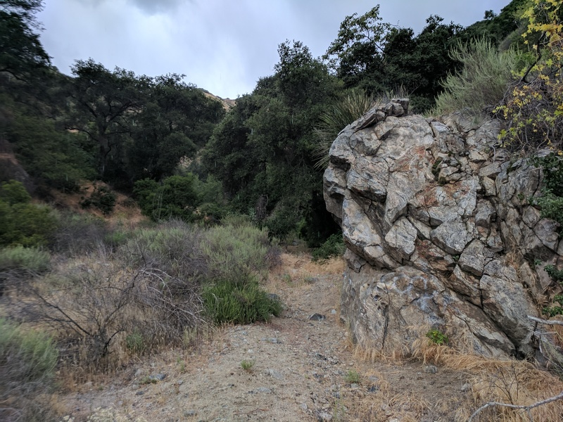 Side view of boulder up the trail from the top of the Wildwood Canyon parking area.