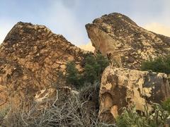 Fish Head Boulder