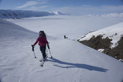 Rock Climbing Photo: Sara Susca on a ski tour of Nordenskiold Land - Sp...