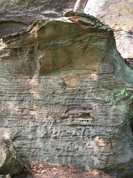 Rock Climbing Photo: Fresh Meat