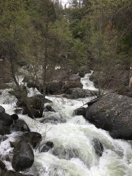 The rapids below the Chilnualna Falls, feeding into the Merced. Photo taken from steel frame concrete bridge crossing the creek.
