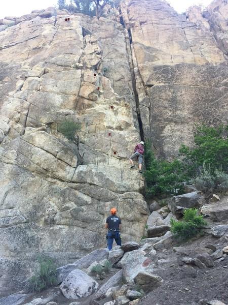 Rock Climbing Photo: Bolts for On Safari