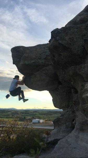 Rock Climbing Photo: Bear Dog.