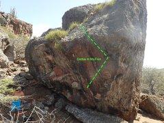 Rock Climbing Photo: Cactus in my foot