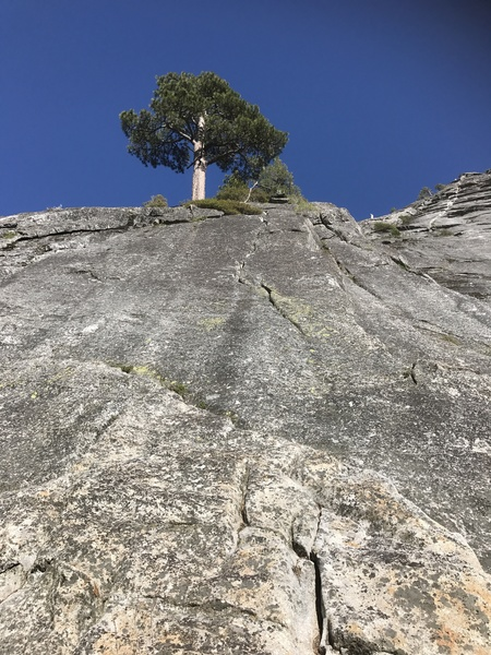Rock Climbing Photo: Dirty, flaring, tricky pro, insects, but easy...  ...