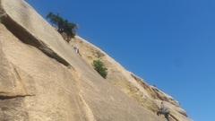 Rock Climbing Photo: Heading up Tree Route