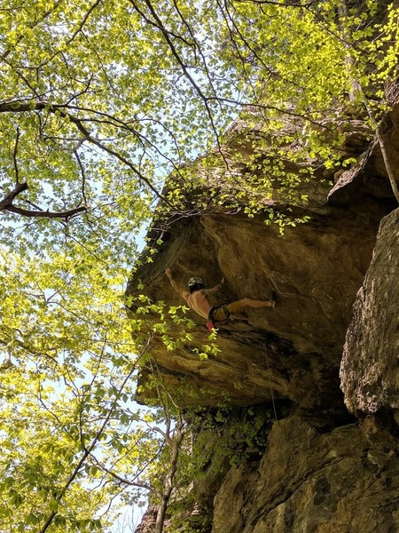 Rock Climbing Photo: Deadpoint crux of Creme de la Choss (12c).