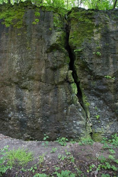 Rock Climbing Photo: Head on